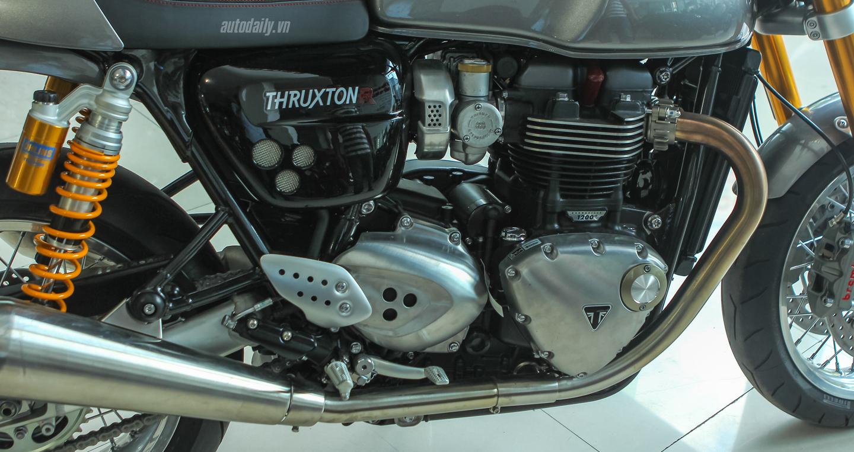 Triumph Thruxton1 (23).JPG