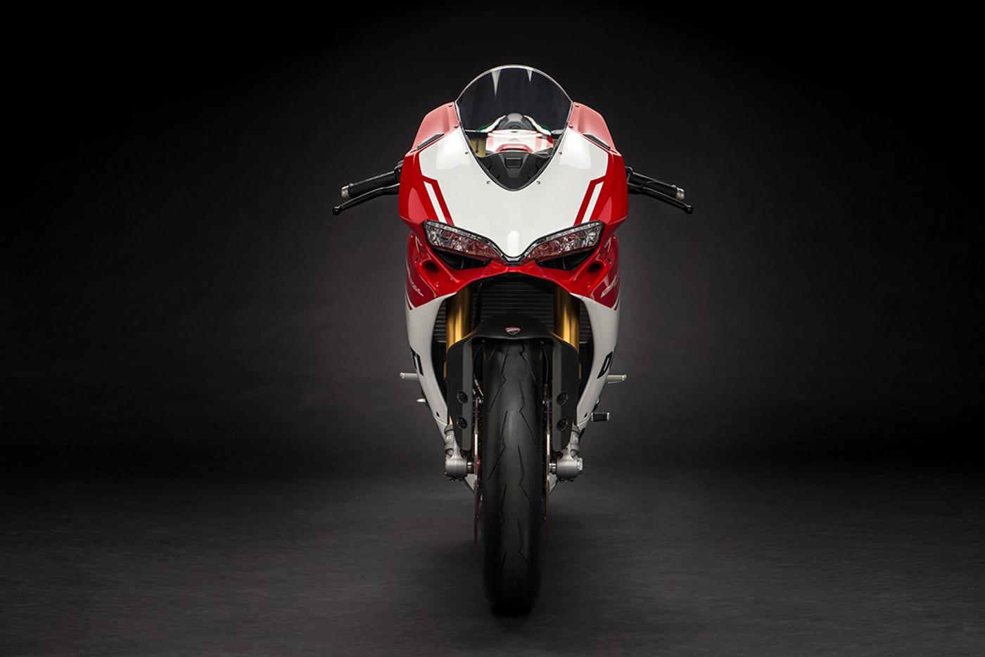 ducati-1299-panigale-r-final-edition-19.jpg