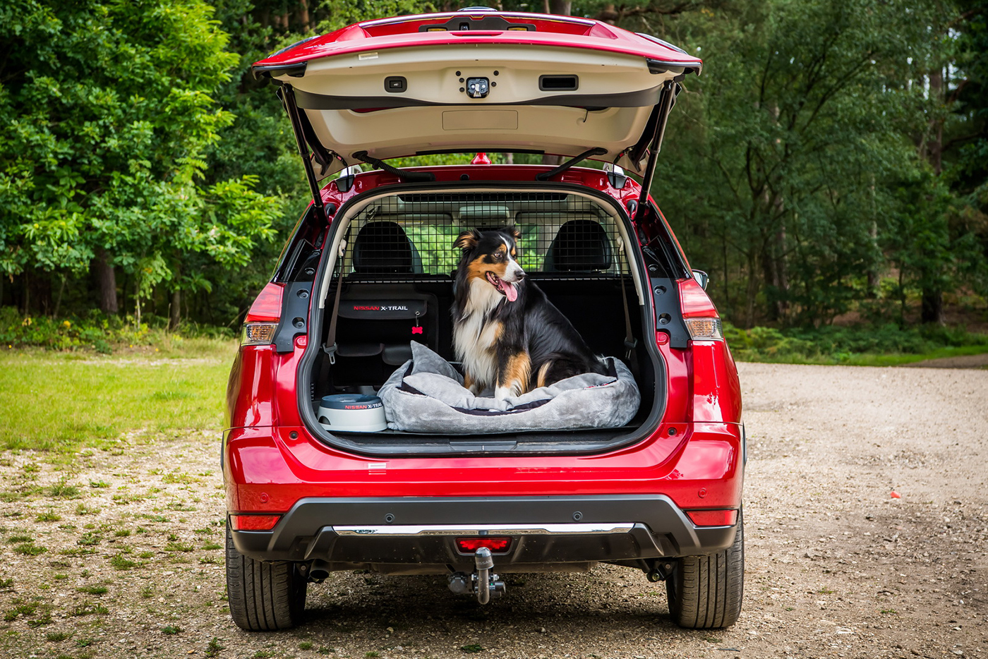 nissan-x-trail-paw-pack-edition-7.jpg