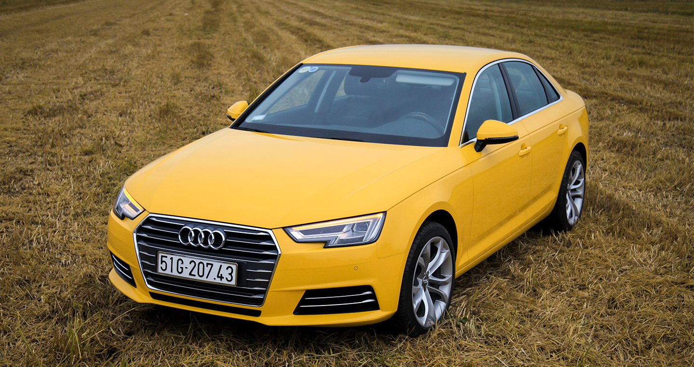 a4-yellow-8.jpg