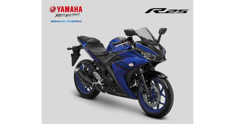 yamaha-yzf-r25-1.jpg