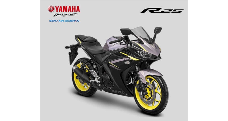 yamaha-yzf-r25-3.jpg