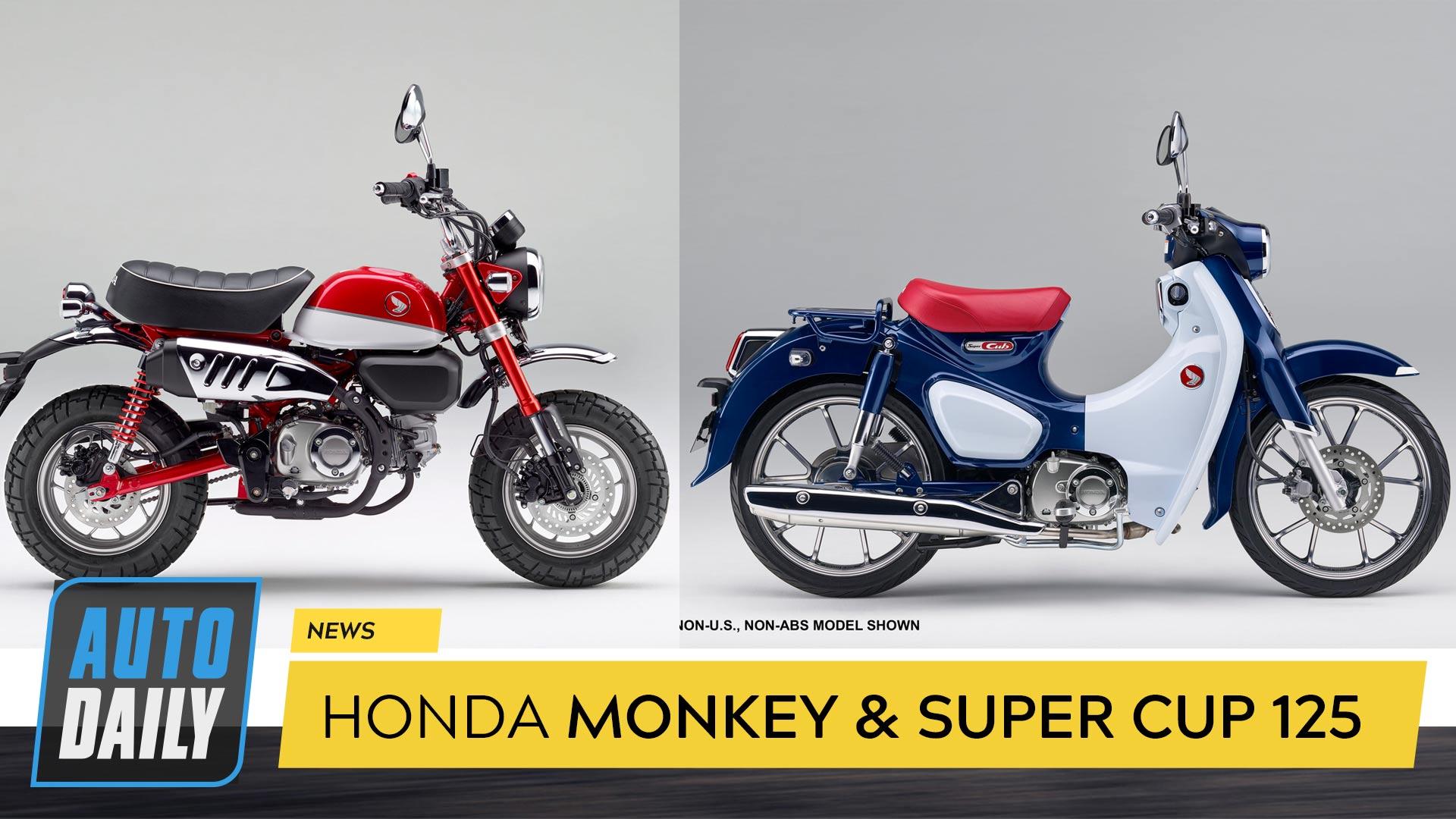 Honda Monkey 125 và Super Cub 125 chính hãng sắp ra mắt tại Việt Nam?