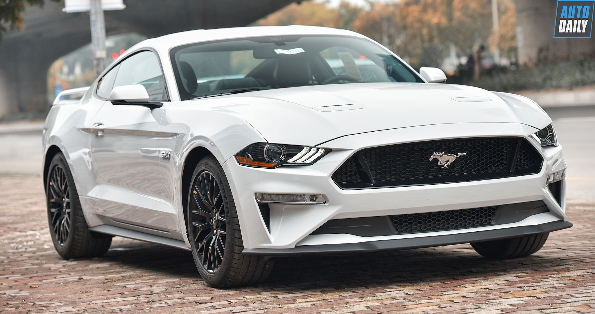 Ford Mustang GT 2019 mạnh 460 mã lực về Việt Nam, giá 4,4 tỷ