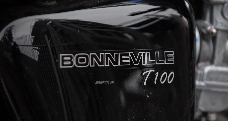 triumph Bonneville T100 2016 (9).jpg