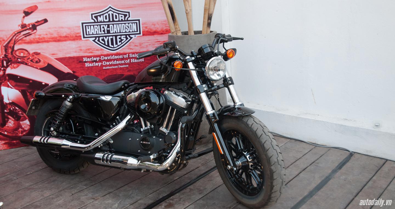 Harley-Davidson VN (3).jpg