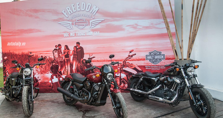 Harley-Davidson VN (4).jpg