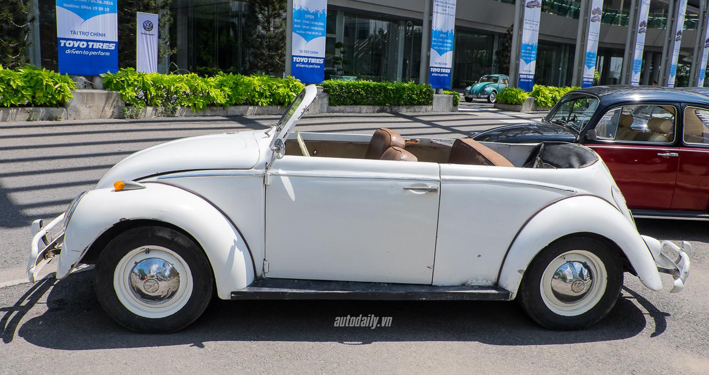Volkswagen (28).jpg