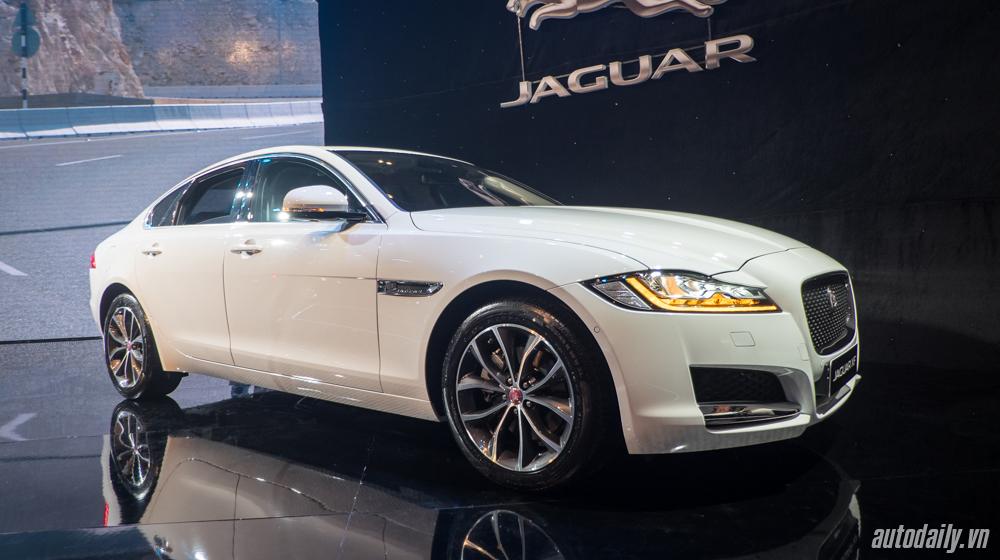 Jaguar XF (1).jpg
