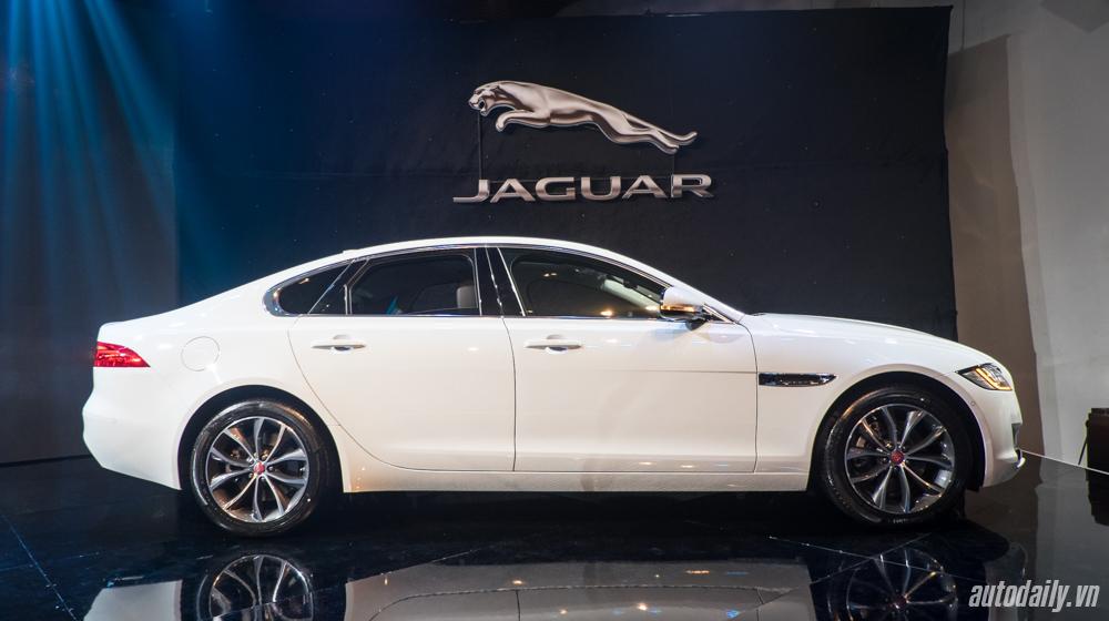 Jaguar XF (2).jpg