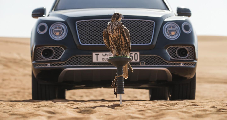 bentley-bentayga-falconry-mulliner-10.jpg