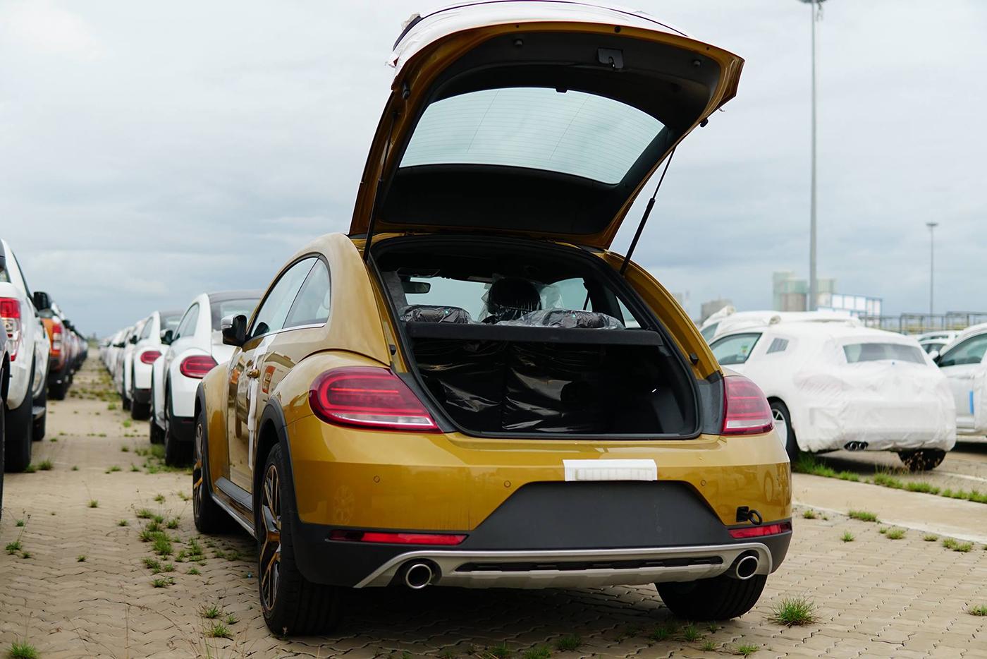 volkswagen-beetle-dune-2.jpg
