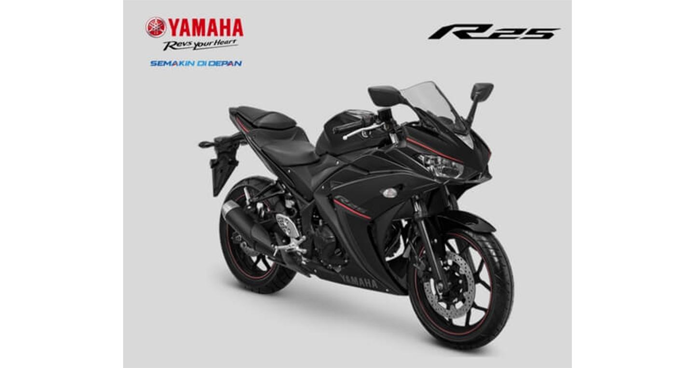 yamaha-yzf-r25-2.jpg