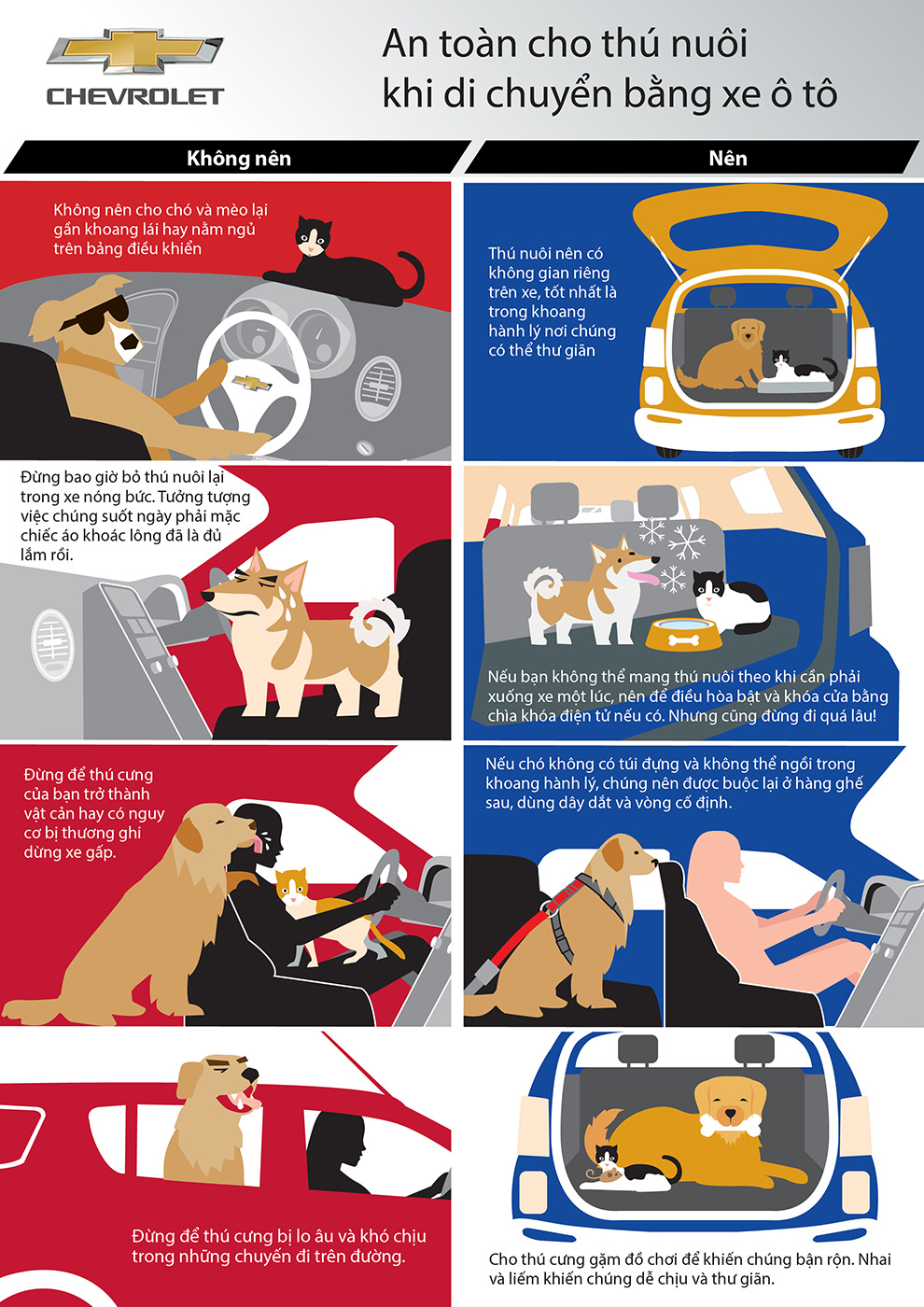 pet-safety-for-car-travel-vn.jpg