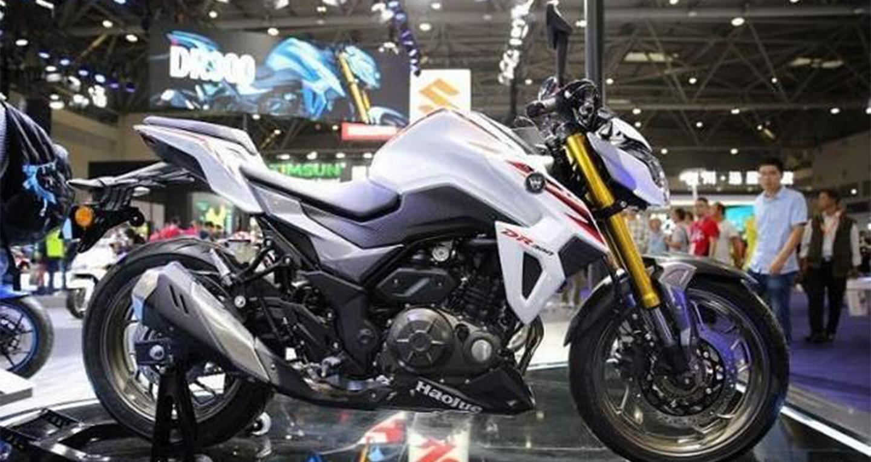 suzuki-gixxer-300-6.jpg