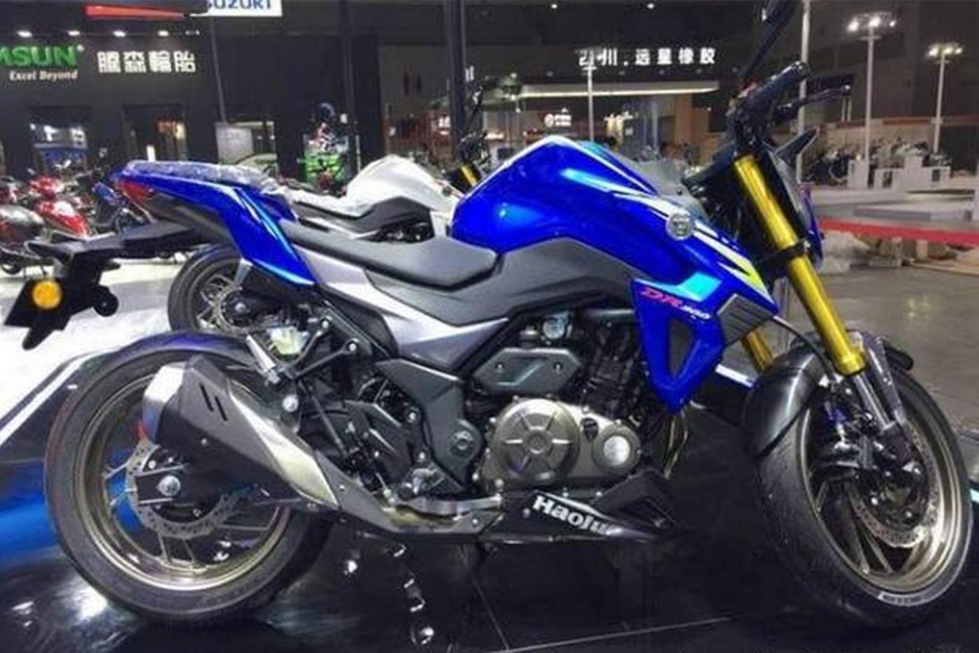 suzuki-gixxer-300-7.jpg