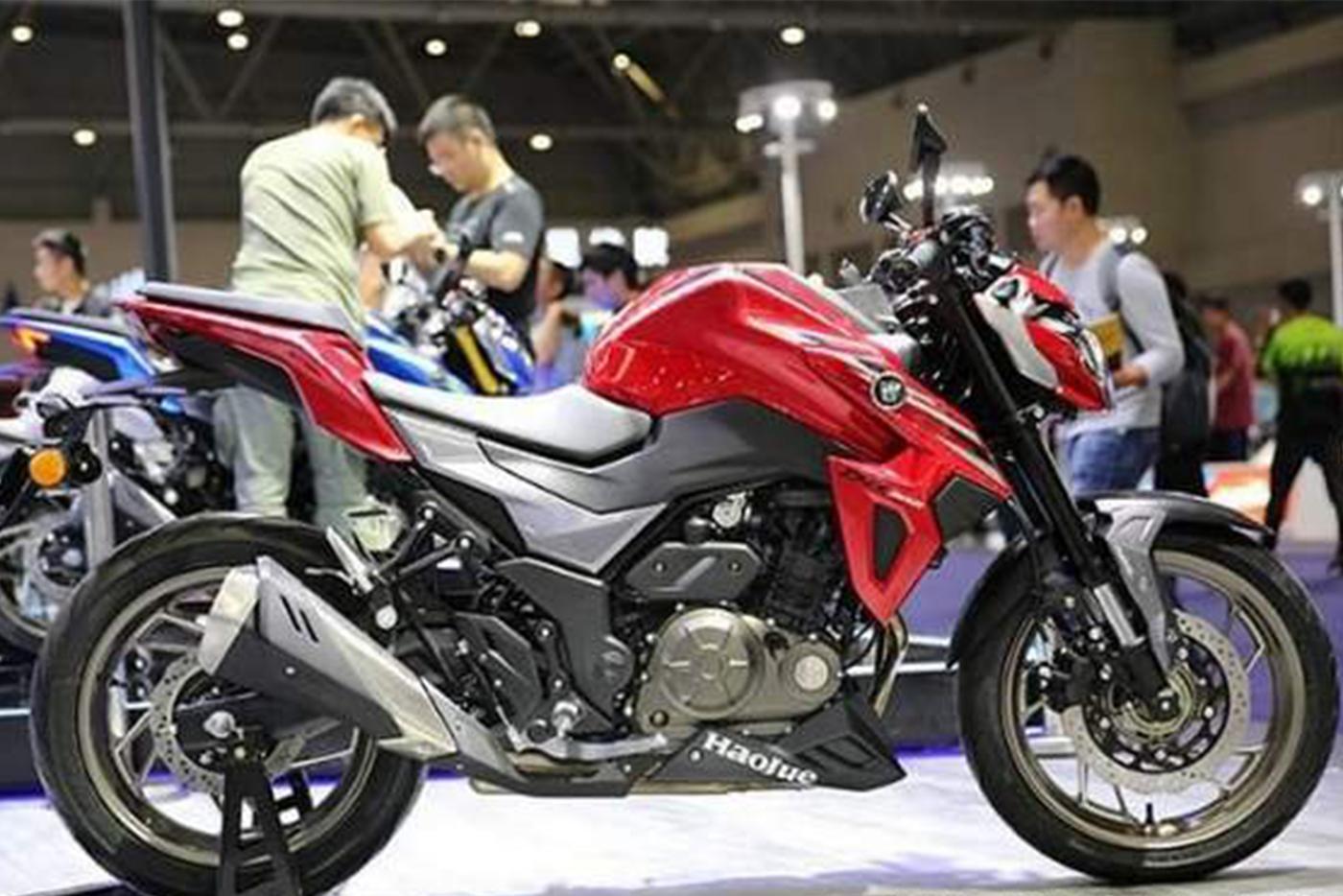 suzuki-gixxer-300-8.jpg