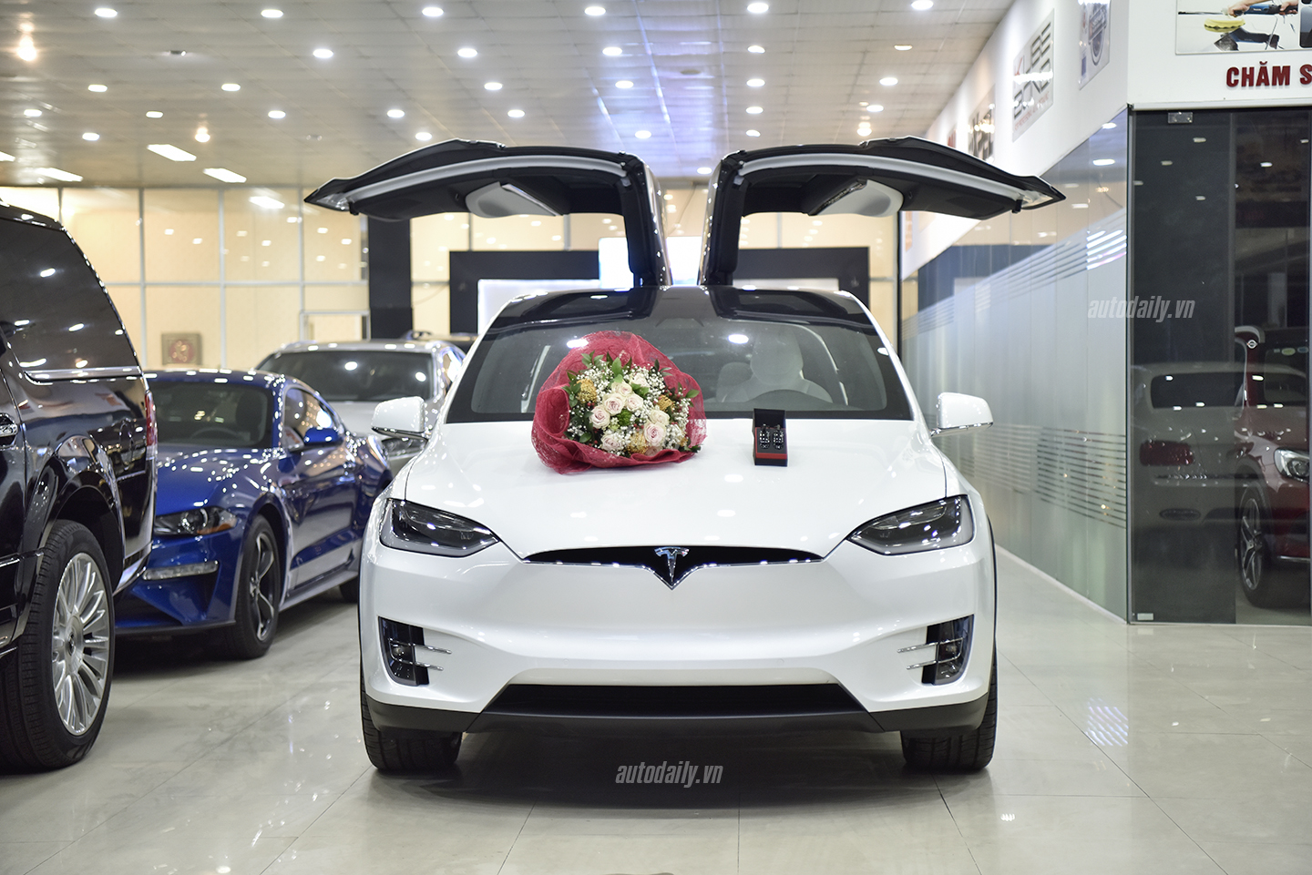 tesla-model-x-autodaily-dsc1454-copy.jpg