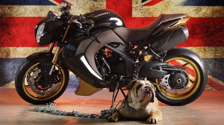 Triumph Speed Triple Bulldog