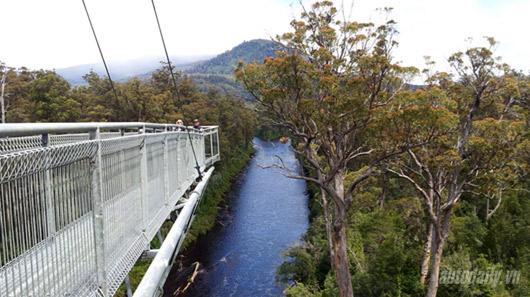 Tasmania - Hòn đảo của những nguồn cảm hứng - 4
